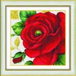 Tranh thêu chữ thập: Hoa hồng (in màu) 6