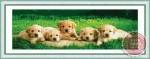 Tranh thêu chữ thập đàn chó